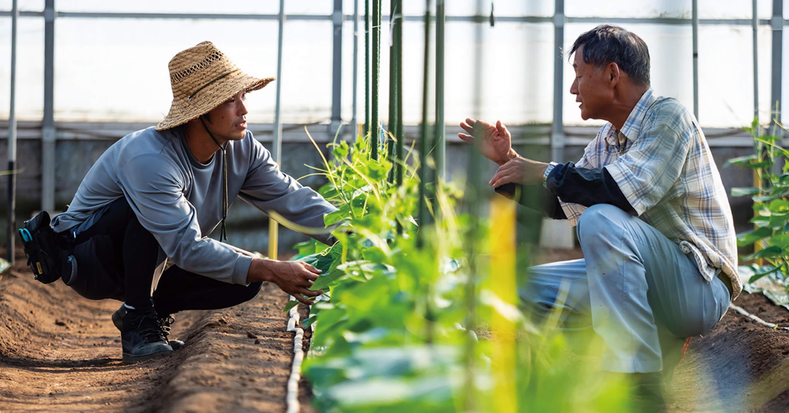 みやざき農業実践塾